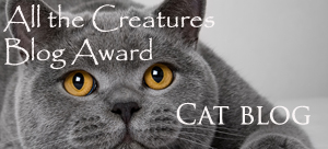 cat_blog_award.jpg