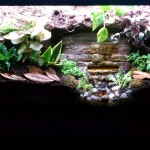 Recycle that old fish tank