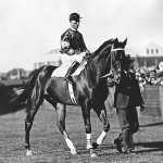 Phar Lap famous international racehorse