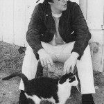 John Lennon was crazy about cats